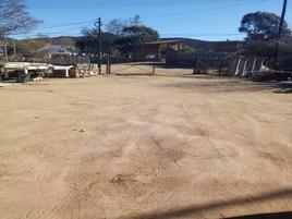Foto de terreno comercial en venta en rancho tanama , la bondad, tecate, baja california, 0 No. 01