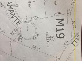 Foto de terreno habitacional en venta en  , nuevo ojocaliente, ojocaliente, zacatecas, 11296334 No. 01