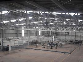 Foto de nave industrial en renta en rincon 1, rincón de romos, rincón de romos, aguascalientes, 8619724 No. 01