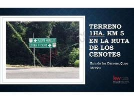 Foto de terreno habitacional en venta en ruta de los cenotes , puerto morelos, benito juárez, quintana roo, 0 No. 01
