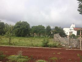 Foto de terreno habitacional en venta en san francisco 10, bermúdez, huasca de ocampo, hidalgo, 0 No. 01