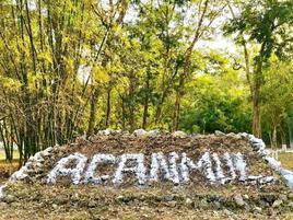 Foto de rancho en venta en  , san francisco, campeche, campeche, 12866495 No. 01