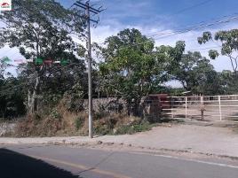 Foto de terreno comercial en renta en san joaquín 2, san joaquín, cuauhtémoc, colima, 0 No. 01