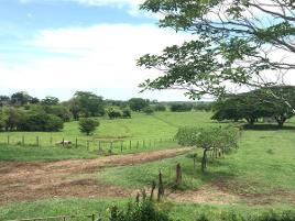Foto de rancho en venta en san juan el alto , jalapa, jalapa, tabasco, 0 No. 01