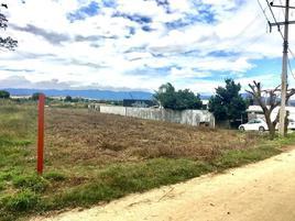 Foto de terreno comercial en renta en  , san lorenzo cacaotepec, san lorenzo cacaotepec, oaxaca, 15666716 No. 01