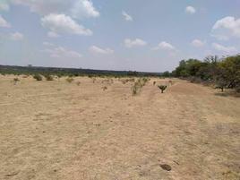 Foto de rancho en venta en  , san luis de la paz centro, san luis de la paz, guanajuato, 0 No. 01