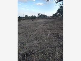 Foto de terreno comercial en venta en san luis soyatlan , san luis soyatlan, tuxcueca, jalisco, 0 No. 01