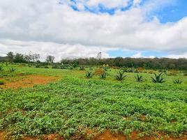 Foto de terreno habitacional en venta en san pablo, huasca 500, río seco puente de doria, huasca de ocampo, hidalgo, 0 No. 01