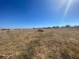 Foto de terreno comercial en venta en san pedro 1, san pedro del monte (la huizachera), león, guanajuato, 0 No. 01