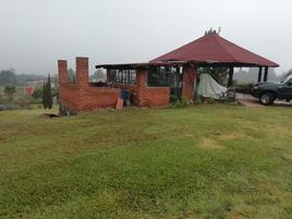 Foto de rancho en venta en  , san pedro pareo, pátzcuaro, michoacán de ocampo, 0 No. 01