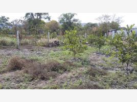 Foto de terreno habitacional en venta en santa cruz 3, santa cruz, cuautla, morelos, 0 No. 01