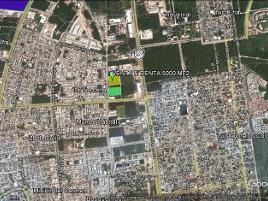 Foto de terreno comercial en renta en  , santa fe del carmen, solidaridad, quintana roo, 16786475 No. 01