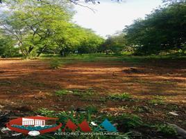 Foto de terreno habitacional en renta en  , santiago etla, san lorenzo cacaotepec, oaxaca, 0 No. 01