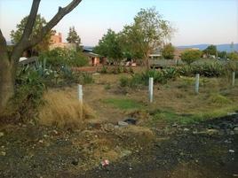 Foto de terreno industrial en venta en  , santiago undameo, morelia, michoacán de ocampo, 7659464 No. 01
