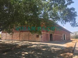 Foto de nave industrial en renta en  , santo domingo tehuantepec centro, santo domingo tehuantepec, oaxaca, 6579461 No. 01