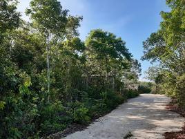 Foto de terreno comercial en venta en saturno , álamos i, benito juárez, quintana roo, 0 No. 01