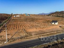 Foto de rancho en venta en s/c , guadalupe, ensenada, baja california, 0 No. 01
