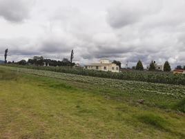 Foto de terreno comercial en venta en sin nombre 100, santa cruz cuauhtenco, zinacantepec, méxico, 0 No. 01
