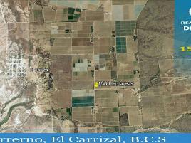 Foto de terreno comercial en renta en sin nombre , el campanario, la paz, baja california sur, 0 No. 01