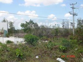 Foto de terreno comercial en venta en sm 104 , cancún centro, benito juárez, quintana roo, 0 No. 01