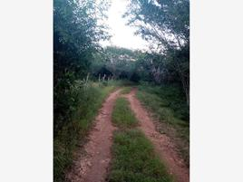 Foto de rancho en venta en s/n , kimbila, izamal, yucatán, 0 No. 01
