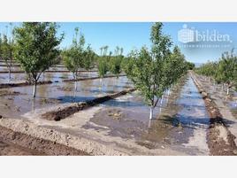 Foto de terreno comercial en venta en sn , la loma, canatlán, durango, 0 No. 01