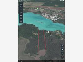 Foto de terreno habitacional en venta en s/n , laguna guerrero, othón p. blanco, quintana roo, 0 No. 01