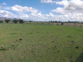 Foto de terreno comercial en venta en sn , morcillo, durango, durango, 0 No. 01