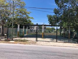 Foto de terreno comercial en renta en s/n , región 240, benito juárez, quintana roo, 0 No. 01