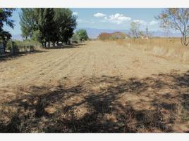 Foto de terreno comercial en venta en s/n , reyes mantecon, san bartolo coyotepec, oaxaca, 19387380 No. 01