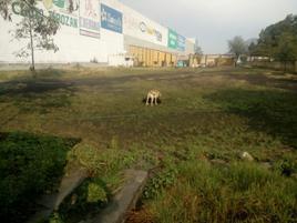 Foto de terreno industrial en venta en tabachines 5 , floresta, la paz, méxico, 0 No. 01