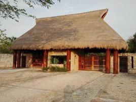 Foto de terreno habitacional en venta en tablaje 32671 , dzibilchaltún, mérida, yucatán, 0 No. 01