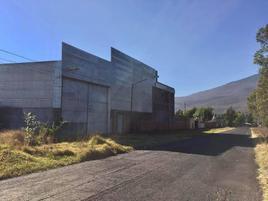 Foto de nave industrial en renta en  , tacícuaro, morelia, michoacán de ocampo, 17085312 No. 01