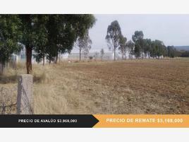 Foto de terreno habitacional en venta en tecolotes 0, de guadalupe, villanueva, zacatecas, 0 No. 01