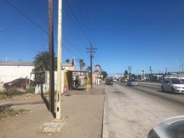 Foto de terreno comercial en renta en terreno comercial en boulevard forjadores, mezquitito , 30 de septiembre, la paz, baja california sur, 12282737 No. 01
