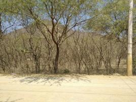 Foto de terreno comercial en venta en terreno denominado la