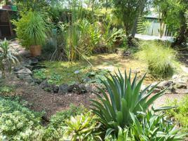 Foto de terreno habitacional en venta en tetela del monte 100, tetela del monte, cuernavaca, morelos, 0 No. 01