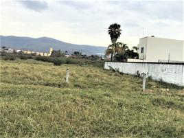 Foto de terreno habitacional en renta en tezoyuca , emiliano zapata, cuernavaca, morelos, 12218009 No. 01