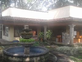 Foto de oficina en renta en  , tlahuapan, jiutepec, morelos, 14202987 No. 01