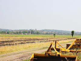 Foto de rancho en venta en trojes de marañón , trojes de marañón, abasolo, guanajuato, 0 No. 01