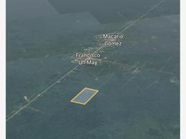Foto de terreno comercial en venta en ubicación: kilómetro 24 a 3 kilómetros a la salida de f. unidad habitacional may n/a, francisco uh-may, tulum, quintana roo, 0 No. 01