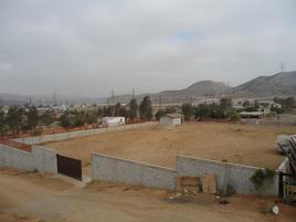 Foto de terreno habitacional en renta en  , valle bonito, tijuana, baja california, 0 No. 01