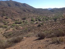 Foto de terreno comercial en venta en  , valle de san telmo, ensenada, baja california, 0 No. 01