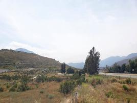 Foto de terreno comercial en renta en  , valle redondo, tijuana, baja california, 17905548 No. 01