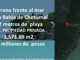 Foto de terreno habitacional en venta en  , villas de guadalupe, guadalupe, zacatecas, 11731949 No. 01