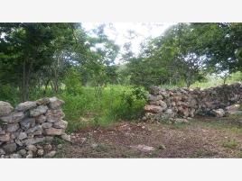 Foto de terreno industrial en venta en x x, izamal, izamal, yucatán, 0 No. 01