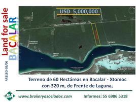 Foto de terreno comercial en venta en xtomoc , xtomoc, bacalar, quintana roo, 0 No. 01