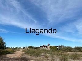 Foto de rancho en venta en  , zamora, hermosillo, sonora, 14337626 No. 01
