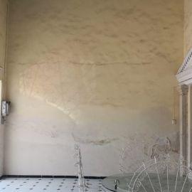 Foto de casa en venta en Merida Centro, Mérida, Yucatán, 20807308,  no 01