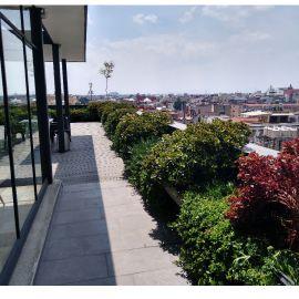 Foto de departamento en venta en Centro (Área 1), Cuauhtémoc, DF / CDMX, 9725099,  no 01